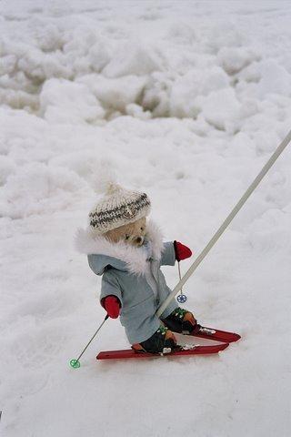 Video images drôles au ski . Paysages d'hiver insolites  VIDEOS VACANCES