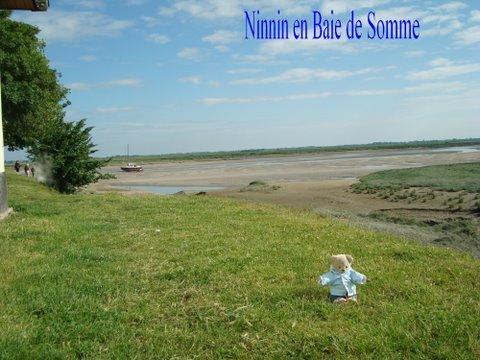 Ninnin en Baie de Somme