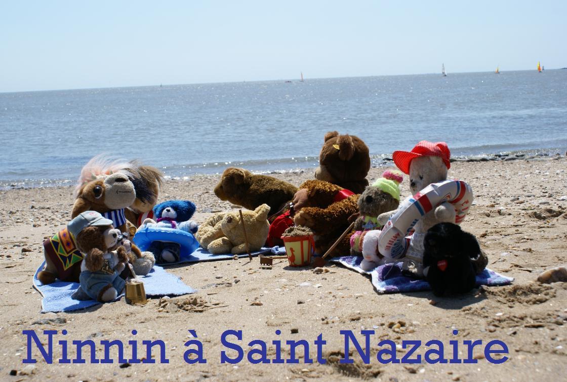 ninnin à Saint nazaire