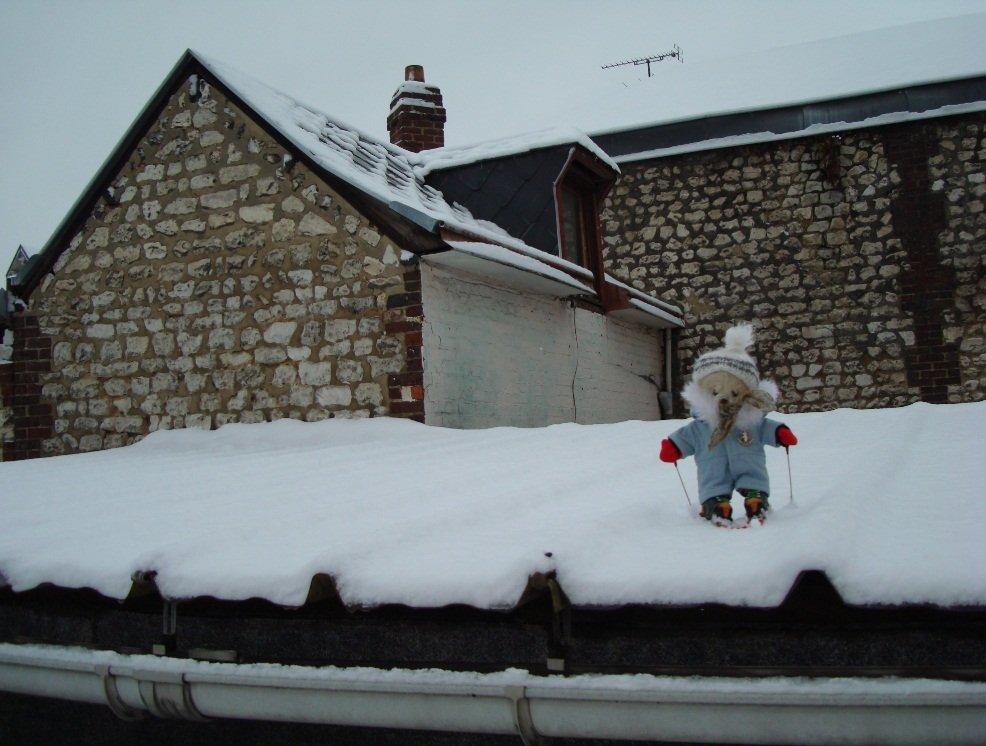 skions sur le toit