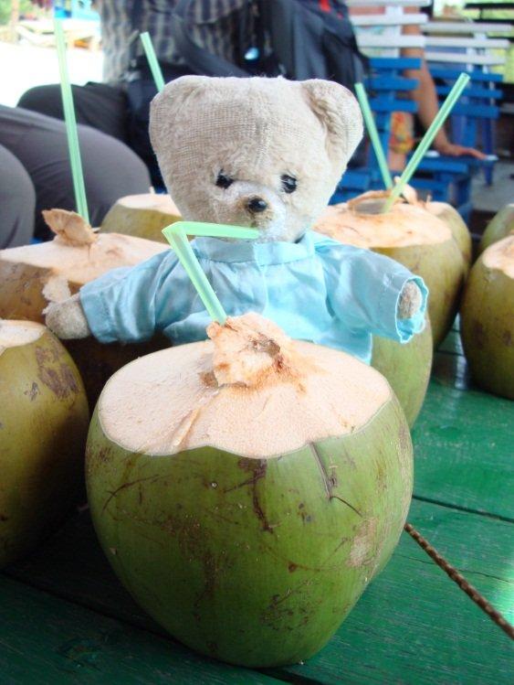 noix de coco 1