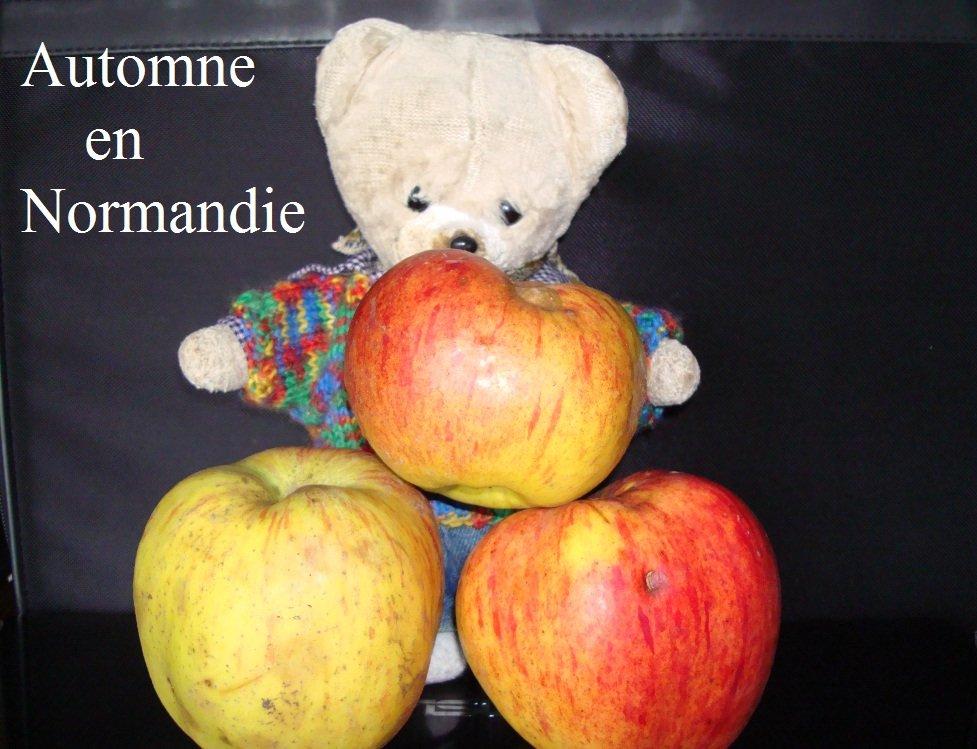 Automne en Normandie